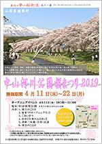 中山河川公園桜まつり2019