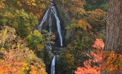 秋の七つ滝